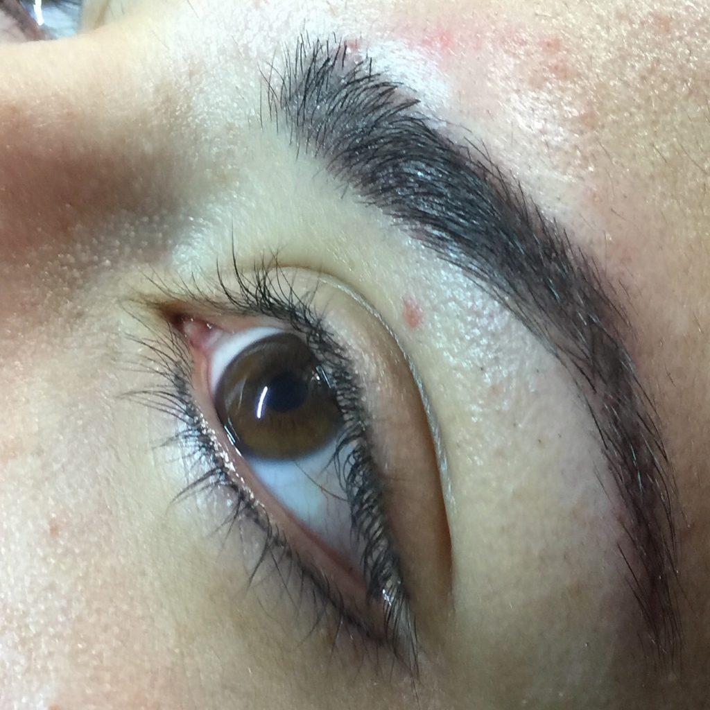 Eyeliner & Brows